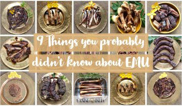 9 things you didn't know about Emu!